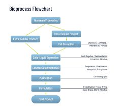 Bioprocess Flow Chart Smart Chromatography Downstream Processing Without