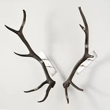 deer antlers wall decor