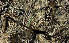 Mossy Oak Patterns Delectable Camo Creek Hydrographics Vinyl Gallery