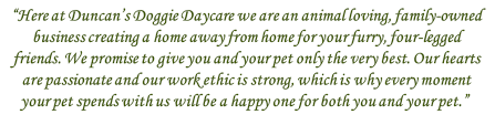 Duncans Doggie Daycare