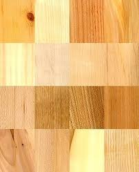 Types of woods for furniture Wood Sample Types Of Woods For Furniture Types Of Wood Furniture Damage Types Of Woods For Furniture Types Of Wood Furniture Damage