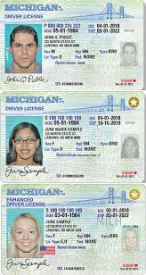 2020 Id Of State Prepares Real Michigan Secretary For Regulations In