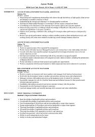 Account Manager Relationship Manager Resume Samples Velvet Jobs