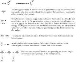 Gene Mapping Problems Genetic Mapping And Manipulation Chapter 1 Introduction And