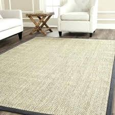 home and furniture captivating grey sisal rug on dove crate barrel review appealing casual natural fiber marb