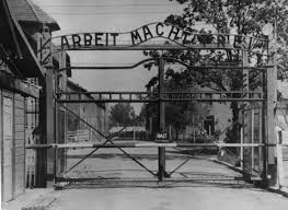 essay on concentration auschwitz essay questions