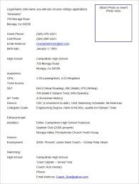 Resume Formates Awesome Best Resume Formats 48free Samples Examples Format Free With Regard