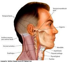 cara mengobati kelenjar getah bening di leher