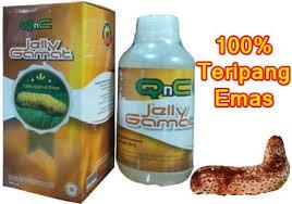 Hasil gambar untuk Jelly Gamat QnC