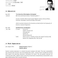 Sample Executive Resume Templates Free Information Latest Samples