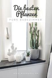 Welche Pflanzen Eignen Sich Fürs Badezimmer Dekorieren Mit