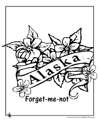 Small Picture Alaska State Flower Coloring Page Woo Jr Kids Activities