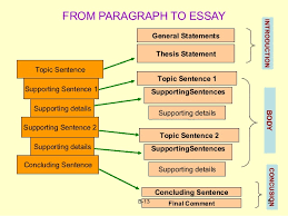 essay organization fpe sentences concluding sentence 5 from paragraph to essay