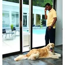 screen door doggie door medium size of patio panel pet door door for sliding glass door screen door doggie