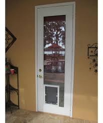 in glass pet door