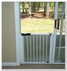 automatic doggie door clever sliding glass doors door automatic door for sliding glass doors with pet