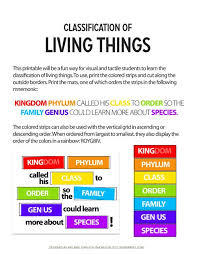 Classification Of Living Things Science Curriculum