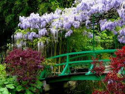 i ve had the great fortune of seeing monet s garden