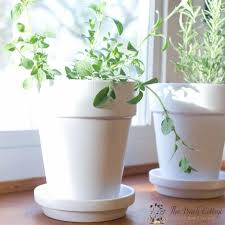 The Birch Cottage shares how to paint terra cotta pots. Turn ordinary clay  pots into