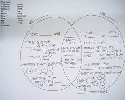 Comparing Mitosis And Meiosis Venn Diagram Mitosis Meiosis Venn Diagram Elegant 125 Best Svt Images Ontop
