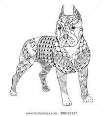 Pit Bull Terrier Zentangle Stylized Vector Illustration Freehand