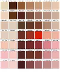Pantone Brown Color Chart Color Chart In 2019 Pms Color Chart Pantone Color Chart