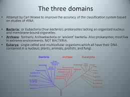 Three Domains Of Life Venn Diagram Diversity Of Microbes Option F Ppt Video Online Download
