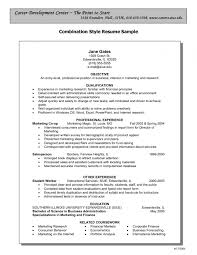 Combination Resume Templates Magnificent Combination Resume Template Word Templates H Sevte Within