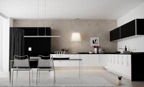 Stylish Kitchen Cabinets Black And White Kitchen Designs Photos Cliff Kitchen