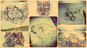 эскизы тату рысь лучшие рисунки для татуировки с рысью
