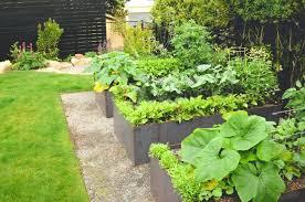 steel raised garden beds queen steel raised bed garden colorbond raised garden beds sydney