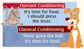 Example Of Classical Conditioning Read Now Difference Between Operant And Classical Conditioning