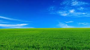 Green Nature Wallpaper Desktop (Page 5 ...