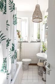 Ruhrwohlde Die Besten Pflanzen Fürs Badezimmer Worauf Man Achten