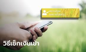 www.เยียวยาเกษตรกร.com เปิดให้ตรวจสอบสถานะโอนเงินเยียวยา รับ 5,000 บาท  งวดสุดท้าย