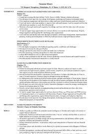 Outside Sales Resume Sample Sales Manager Services Resume Samples Velvet Jobs 60