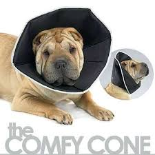 Comfy Cone E Collar For Dogs Cats Dog Uk Size Chart Lamch Org