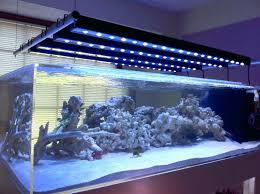 aquarium lighting led lumens reef reviews marine uk