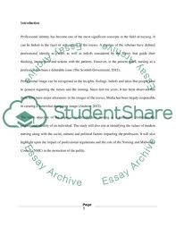 Professional Identity Of Nursing Essay Example Topics And Well