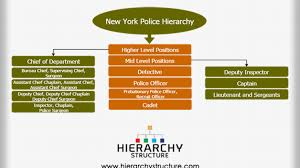 New York Police Hierarchy Chart Hierarchystructure Com
