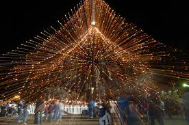 City officials plan to barricade World's Largest Living Christmas Tree  