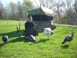 Image result for best turkey decoys