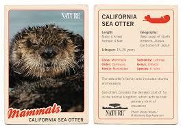 california sea otter trading card