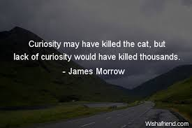 Curiosity Quotes James Morrow Quote Curiosity may have killed the cat but lack of 90