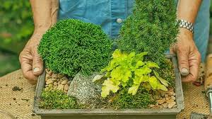 Diy Garden Projects Watch This Easy Diy Garden Projects To Start Youtube