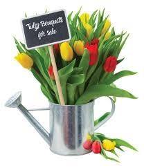 home canadian tulip festival