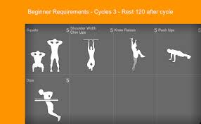 6 month calisthenics workout plan