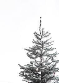 Minimalist Christmas Tree Wallpaper ...