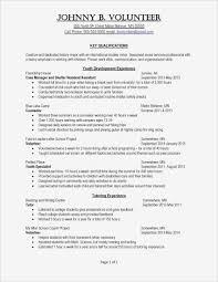 Executive Resume Writing Service New Resume Writer Los Angeles