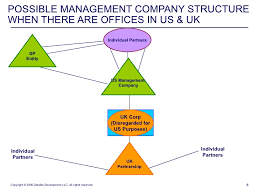Organizational Chart Entity Shapes Management Companies And Special Purpose Vehicles